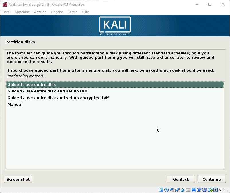 Kali Linux guided use entire disk